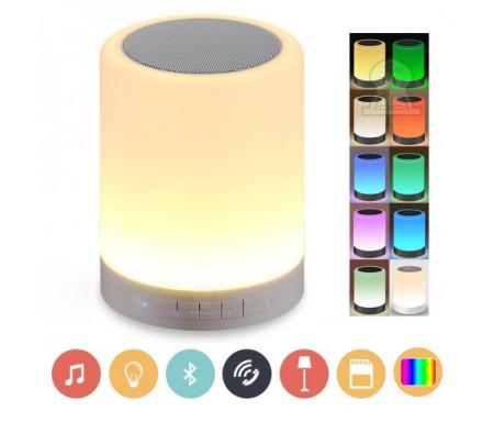 Lampe coranique (veilleuse 10 coloris) + Bluetooth + Lecteur audio Carte SD de 8 Go préchargée par de nombreux contenus islamiques MP3 (Coran - Invocations - Roqya...)