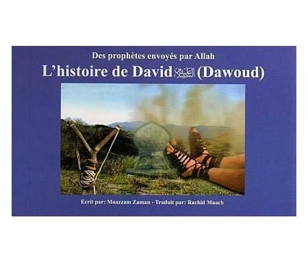 L'Histoire de David (Dawoud) (Des Prophètes envoyés par Allah Tome 12)