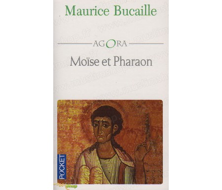 Moïse et pharaon - Les Hébreux en Egypte, quelles concordance des livres saints avec l'histoire ?