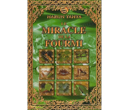 Le Miracle de la Fourmi