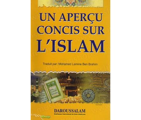 Un Aperçu Concis sur l'Islam