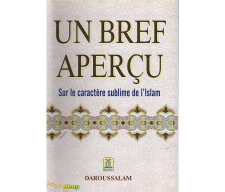 Un bref Aperçu sur le Caractère Sublime de l'Islam