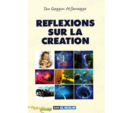 Reflexions sur la création