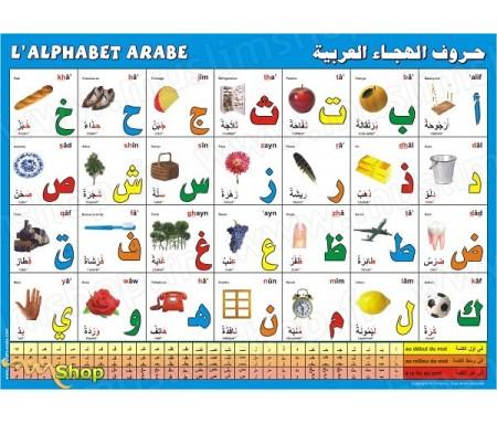 Poster : L'alphabet arabe (bilingue français - arabe)