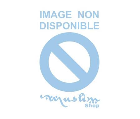 CD Le coran complet Moratal de Mahmoud Khalid Al Hussary